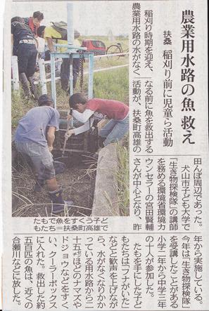newspaper02